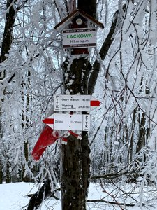 Korona Gór Polski: Lackowa, Beskid Niski
