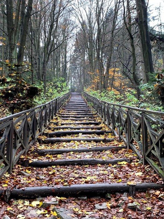 Część szlaku na Św. Krzyż to 'schody'