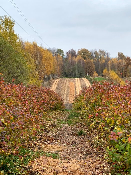 Jesienny pejzaż we wsi Kakonin u podnóża Łysogór
