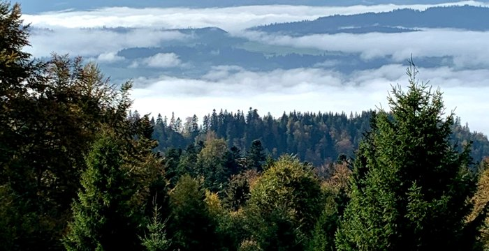 Korona Gór Polski: Turbacz, Gorce