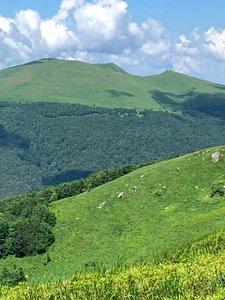 Główny Szlak Beskidzki - Etap 1: Wołosate - Ustrzyki Górne