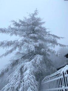 Piękny zimowy Luboń Wielki. Duuużo śniegu, klimatyczne schronisko, mors i przecieranie szlaku.