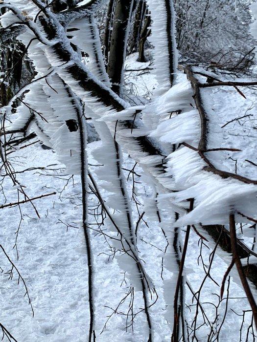 Zima na szczycie Lackowej, 997m