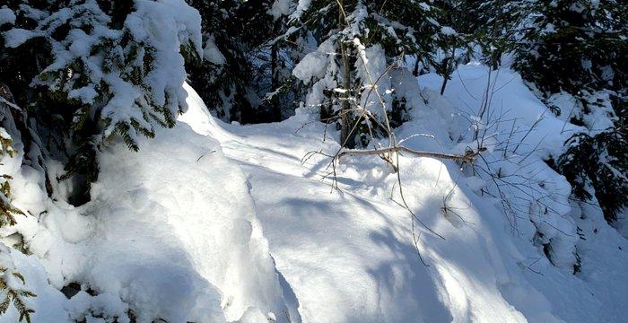 Zimowe Gorce Last Minute. Turbacz i Stare Wierchy z Nowego Targu