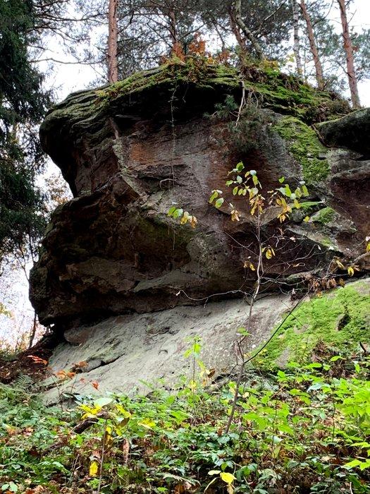 Jedna ze skał w Skamieniałym Mieście