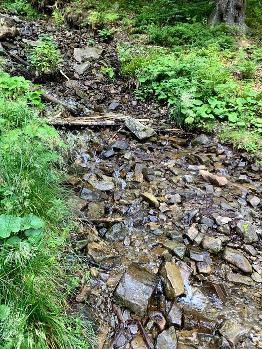 Woda z masywu Babiej Góry
