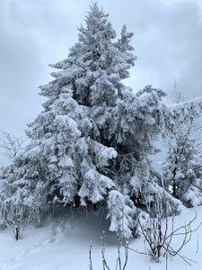 Trzy Korony i Lubań: Pieniny i Gorce na pożegnanie Zimy.