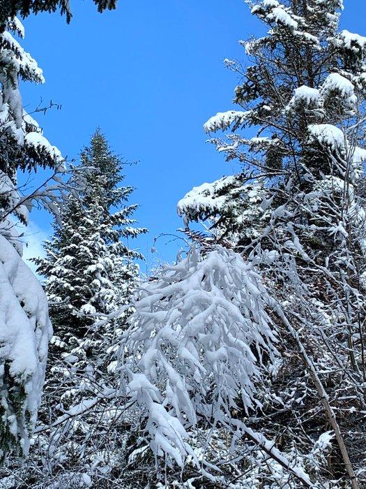 W drodze na Śnieżnicę