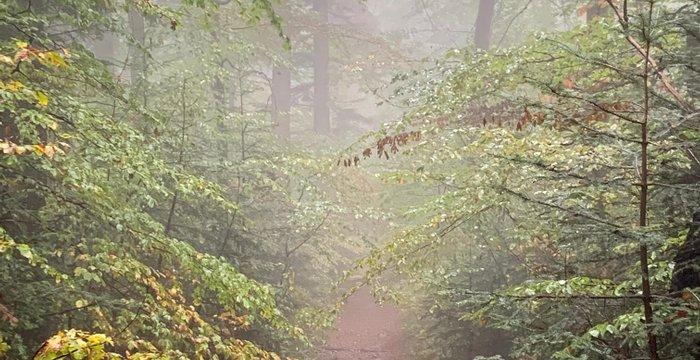 Październik 2020 na szlakach. Wschód słońca na Babiej, Gorce i Czerwone Wierchy.