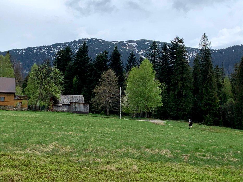 Babia Góra, z niebieskiego szlaku pomiędzy Zawoją Czatoża a Markowa