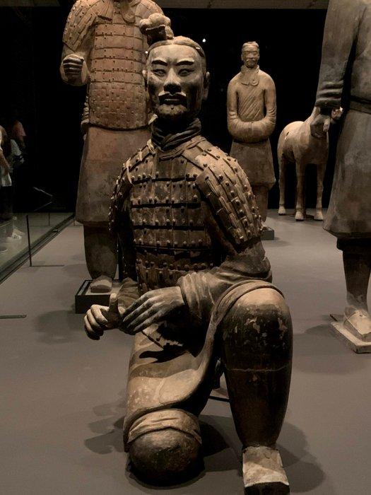 Terracotta warrior / guerrero de terracota