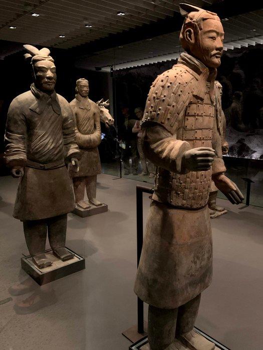 Terracotta warriors / guerreros de terracota