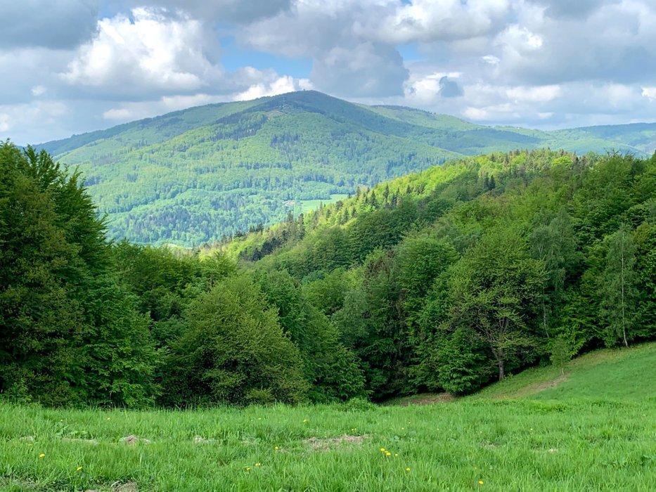 Widok z zielonego szlaku Beskidek - Ustroń Polana
