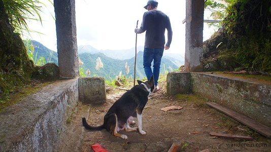 Batad Rice Terraces: Why you should pay for a Local Guide