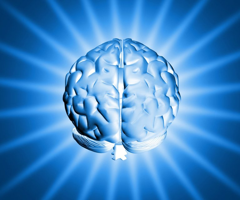 shiny-brain-1150907-1599x1332.jpg