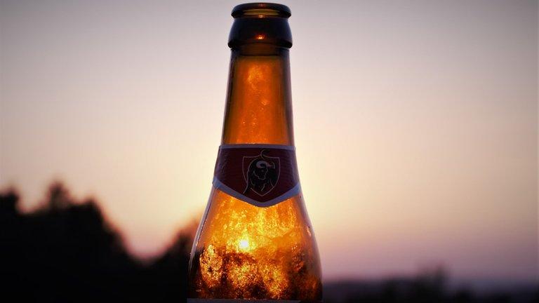 Jupiler sunset.jpg