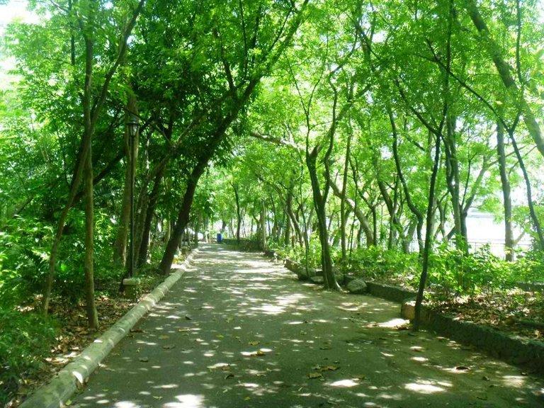 Arroceros-Forest-Park-6-1024x768.jpg