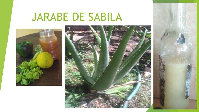 JARABE DE SABILA.jpg