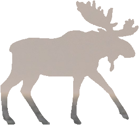 shasta2021sept3rd47mymoose804io.png