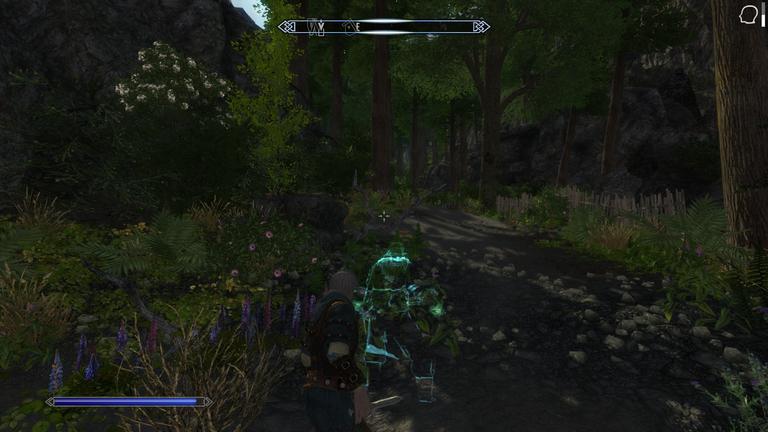 Elder Scrolls V  Skyrim Screenshot 2021.01.07 - 09.14.18.15.png