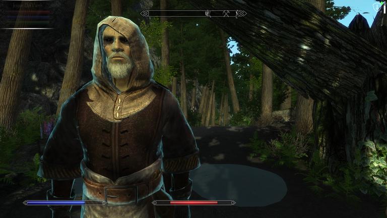 Elder Scrolls V  Skyrim Screenshot 2021.01.07 - 09.16.18.14.png