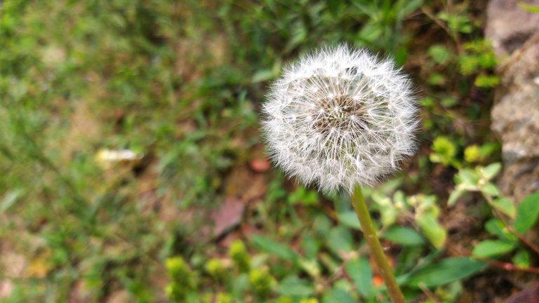 PicsArt_04-05-09.23.14.jpg