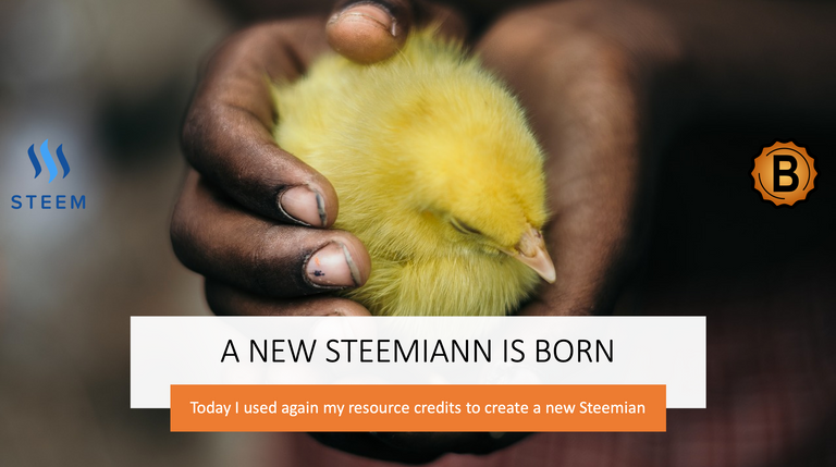 a new steemian is born on the steem blockchain 1.png