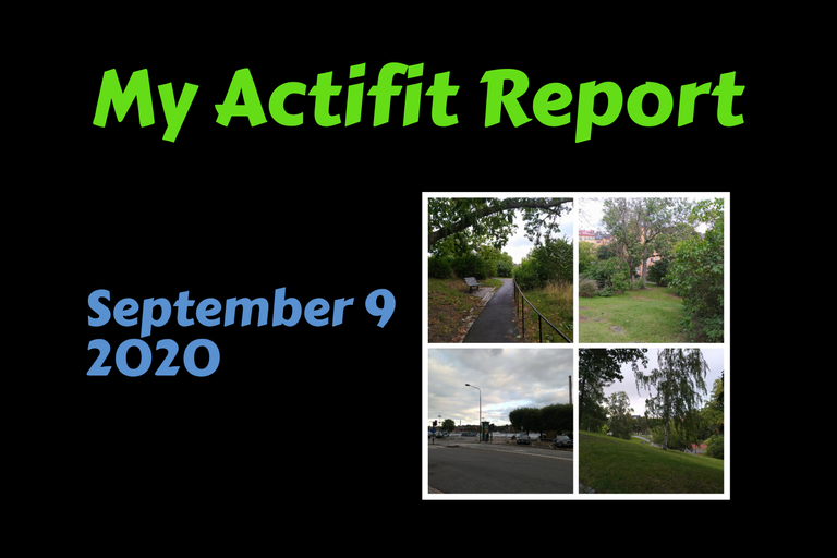 actifit_1_original1.png
