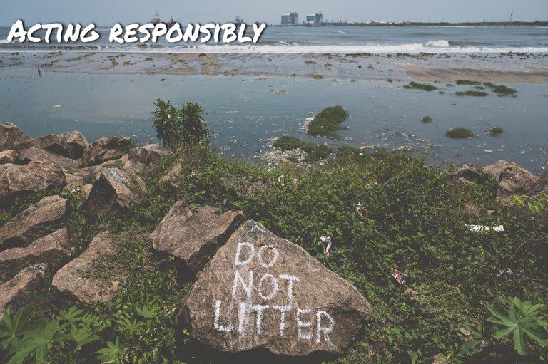 Acting_responsibly.jpg