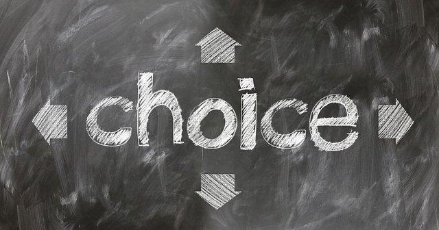 choice2692466__480.jpg