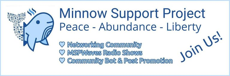 Minnow Support Project