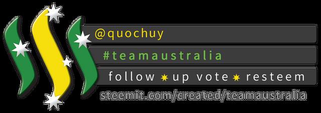 Team Australia Banner