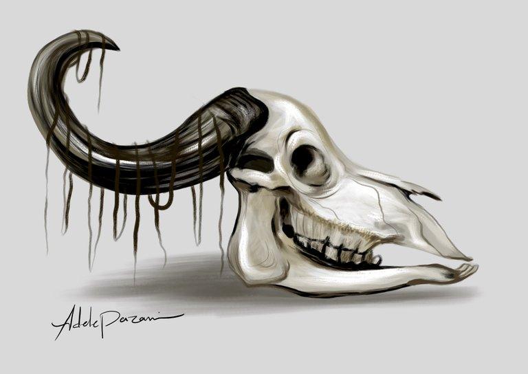 skull111.jpg