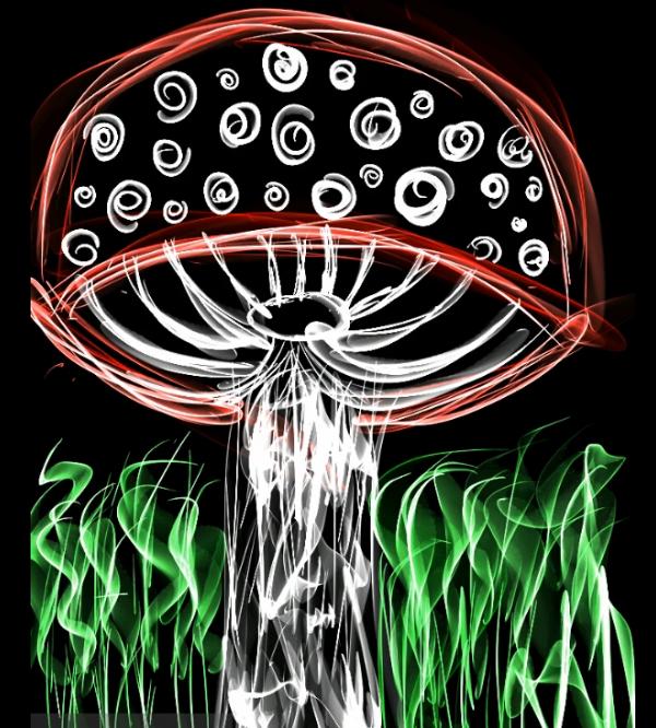 cogumelo.png