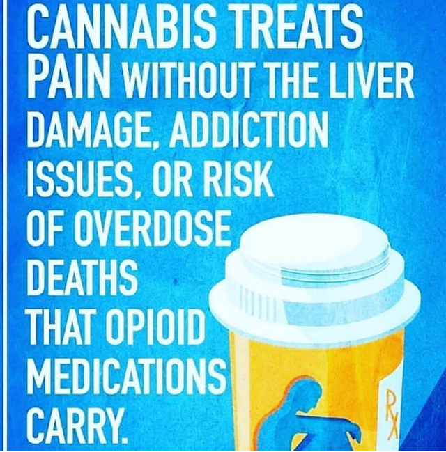 cannapin.png