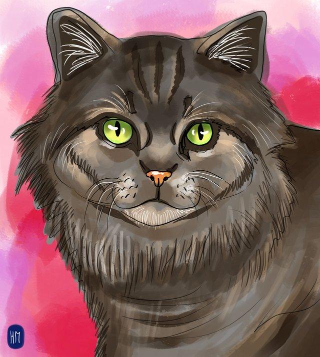 cat(424).jpg