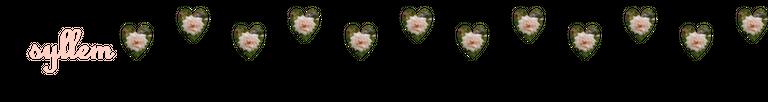 rosas5_2.png