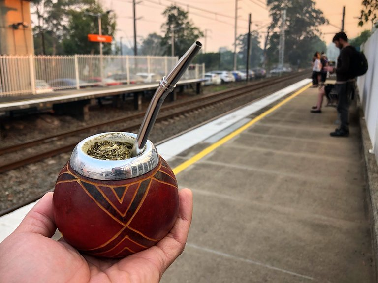 Yerba Mate at Narara station