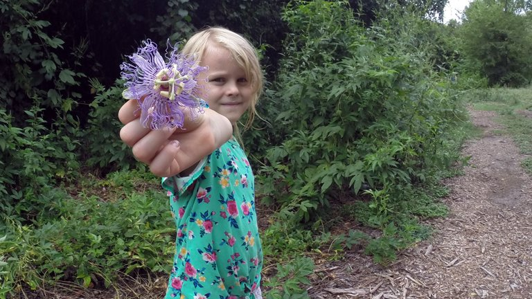 Rosalie shared her appreciation for passionflowers with us.