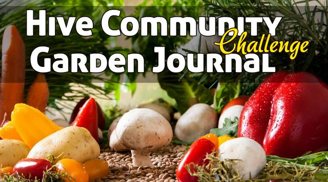 Garden journal challenge.png