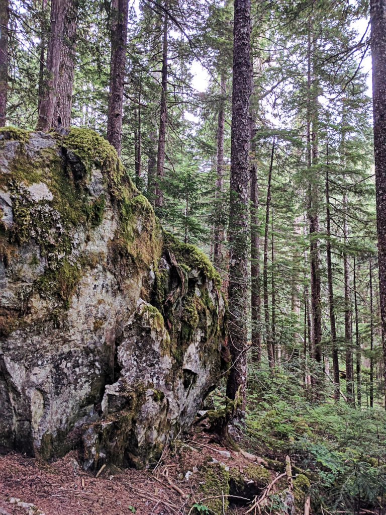Hike0005_Road.jpg