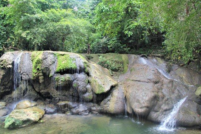 jungle deep.jpg