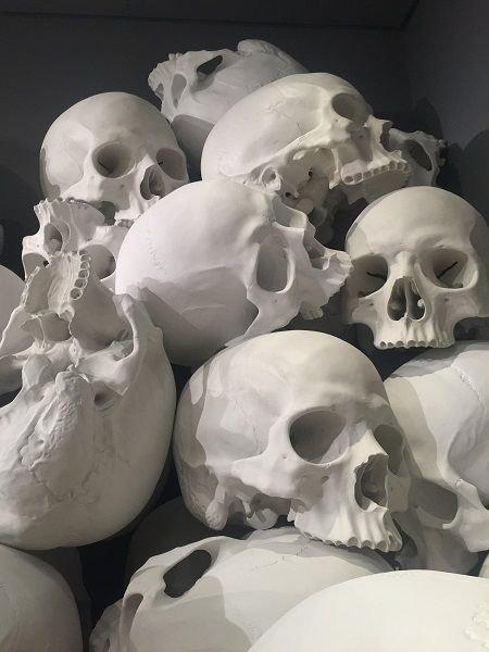 skull room.jpg