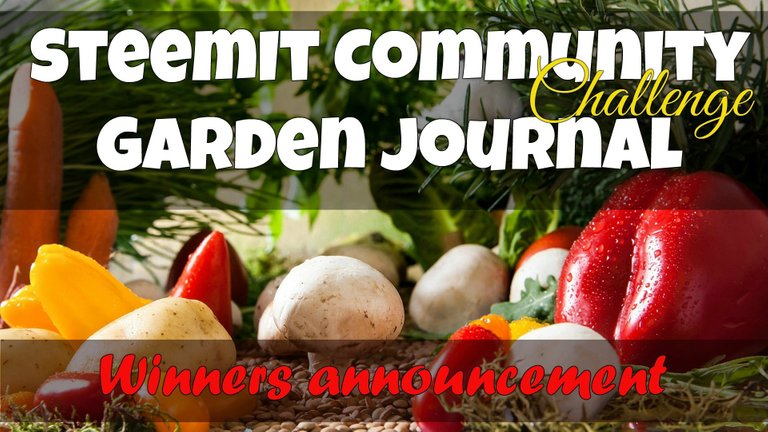steemit community graden journal challenge winners.jpg