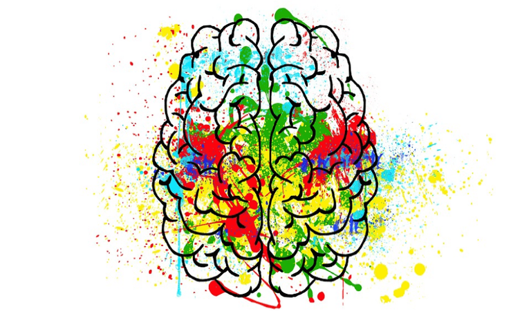 Brain FI - BS.png