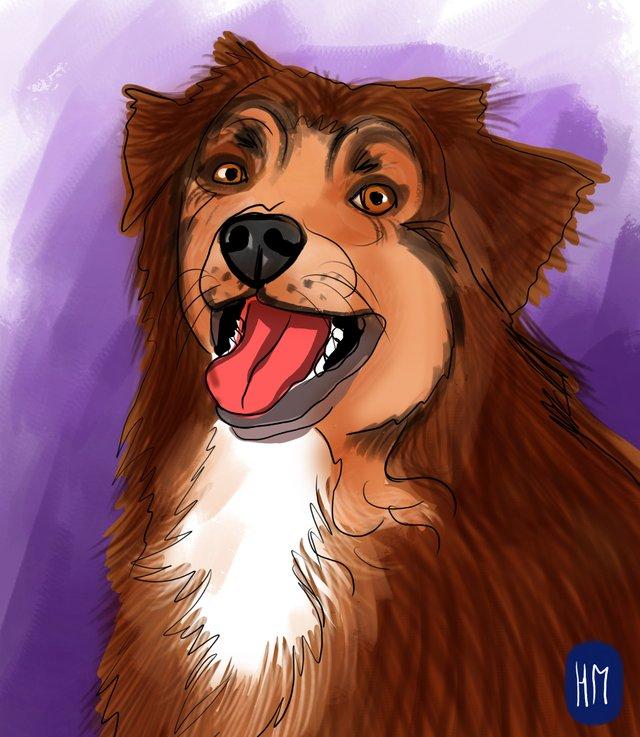 dog happy (476).jpg