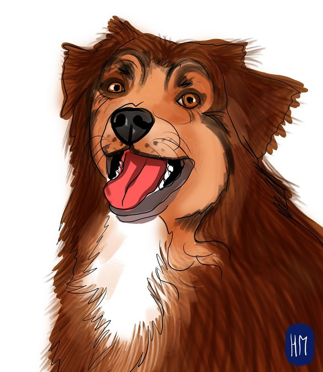 dog happy (485).jpg