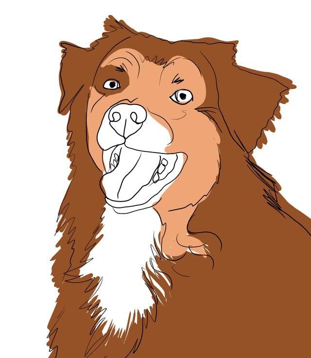 dog happy (481).jpg
