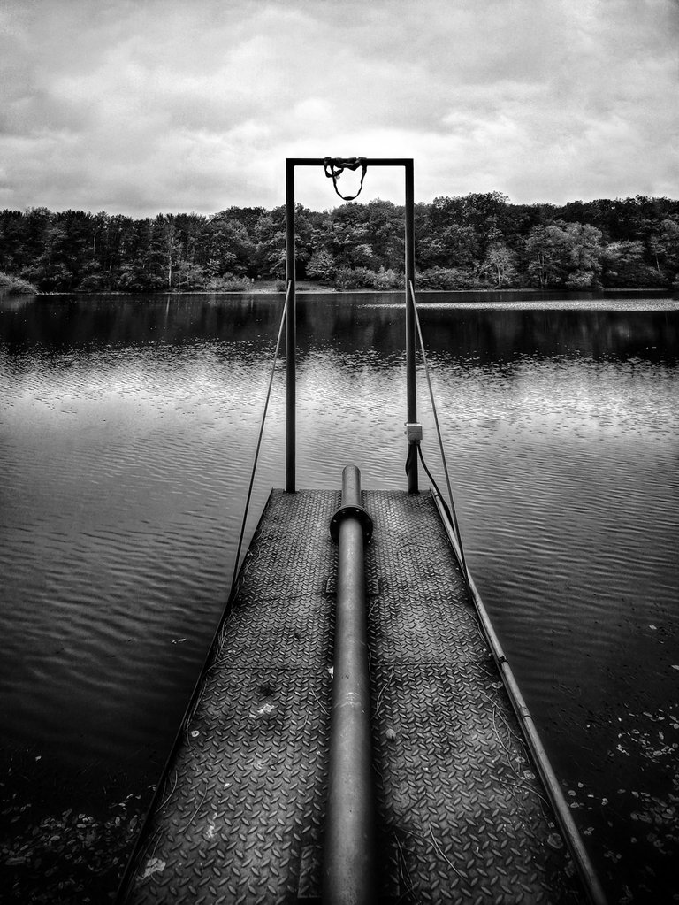 a gate on the lake snapshot by fraenk black and white bw