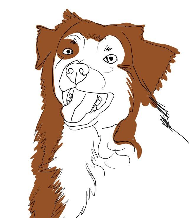 dog happy (479).jpg